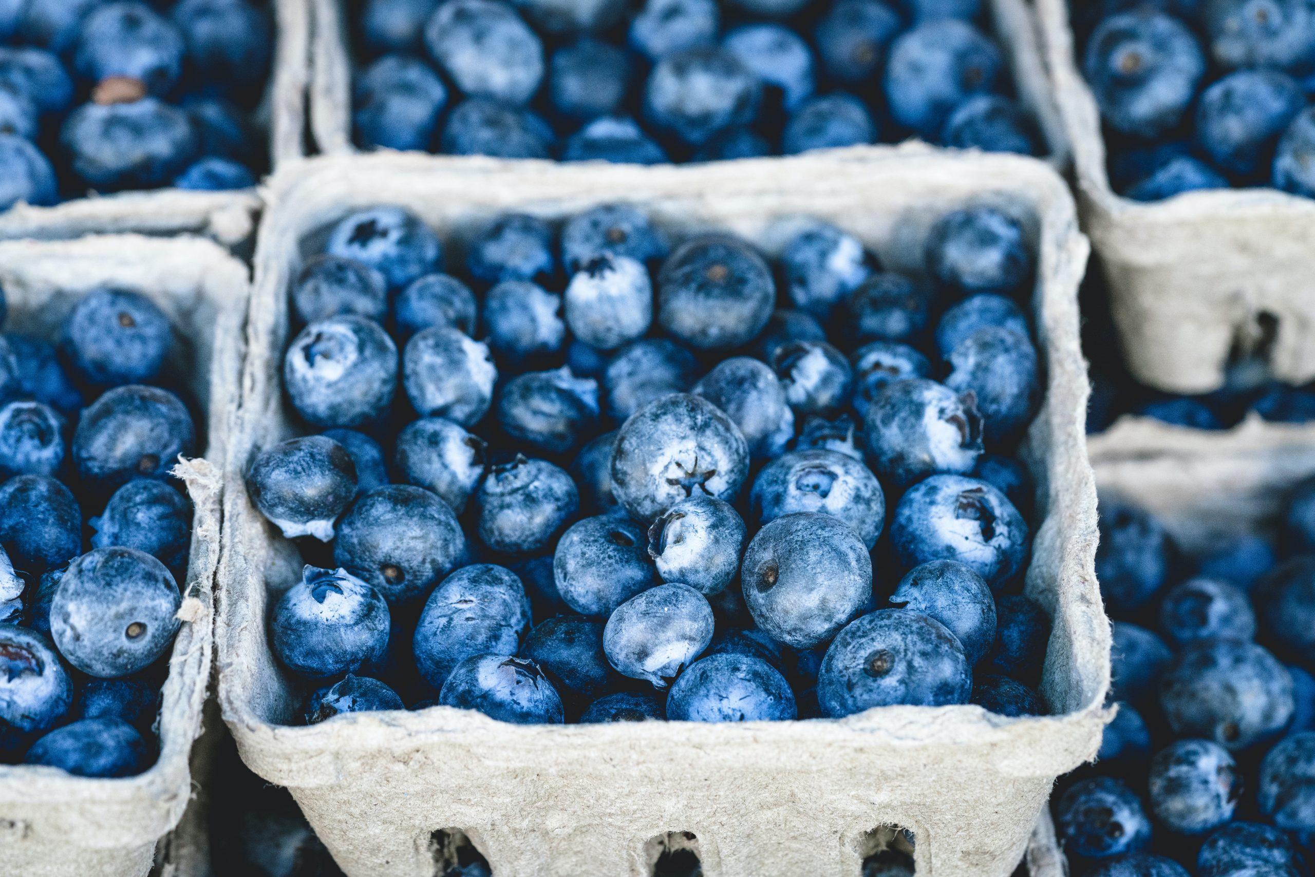 Blueberries The World's Tastiest Super Food